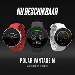 Polar Vantage M