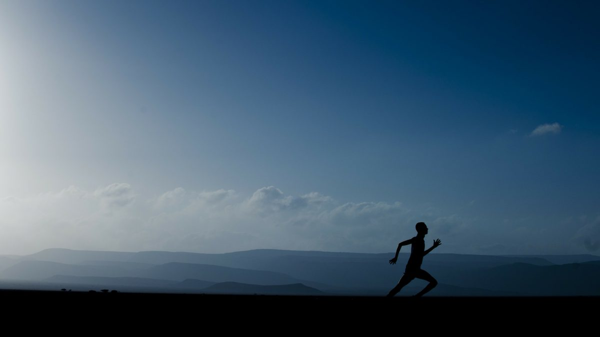 Vijf tips voor de perfecte hoogtestage